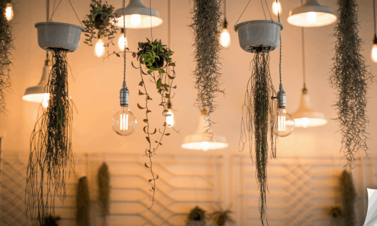 Energiezuinige ledverlichting voor je Airnbnb woning